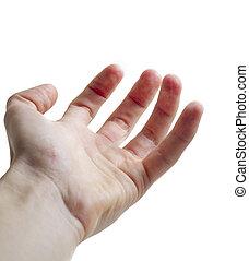 offene hand, handfläche