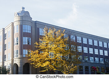 Office Building in Autumn