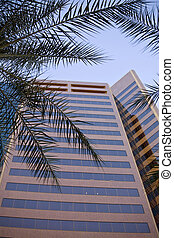 Office Building Phoenix Arizona