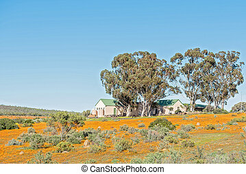 Office buildings of the Namaqua National Park at Skilpad