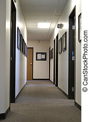 Office Hallway - A long office hallway