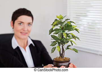 Office worker holding a plant