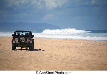 offroad, voertuig, op, een, ver, strand, in, hawaii