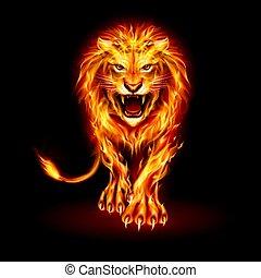 ogień, lew