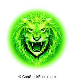ogień, lion., głowa