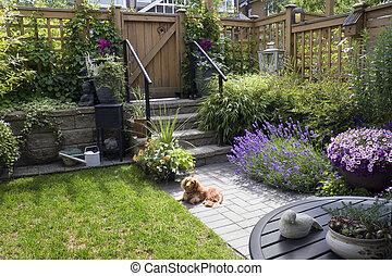 ogród, mały