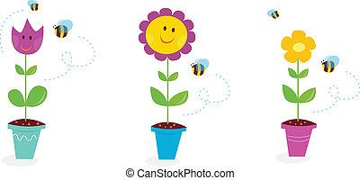 ogród, słonecznik, wiosna, -, tulipan, stokrotka, kwiaty