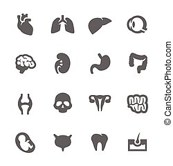 Simple Set of Organs Related Vector Icons for Your Design.