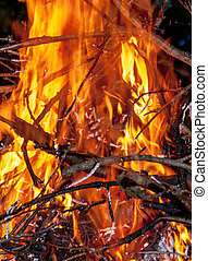 oheň, hořící, večer