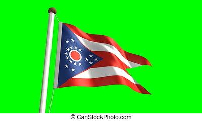 Ohio (seamless & green screen)