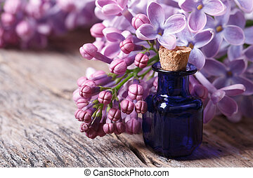 Oil from the fragrant flowers of lilac horizontal