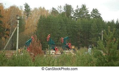 Oil Industry Pumpjacks in forest