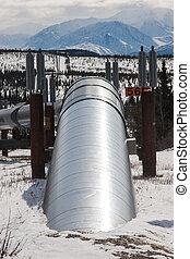 Oil Pipeline in Wilderness