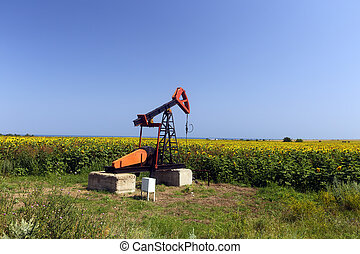 Oil pump jack working in the field