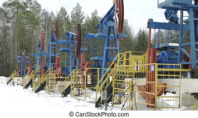 Oil pump jacks working and pumping crude oil for fossil fuel...