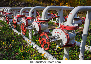 Oil Pump on a background of forest in Russia