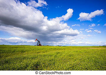 Oil Pumpjack in the middle of green canola field