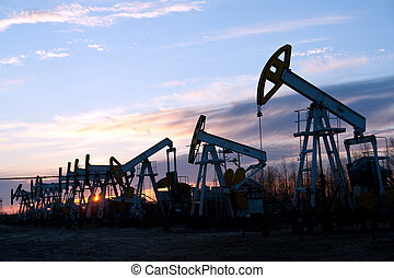 oil pumps
