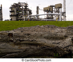 Oil Refinery vs Decayed Tree - Decaying tree trunk in front...
