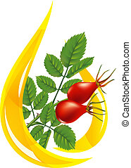 Oil rose hips. Stylized drop and twig with fruits.