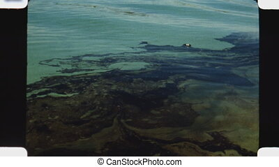 Oil slick. (Vintage 1970s film) - Oil on the surface of...