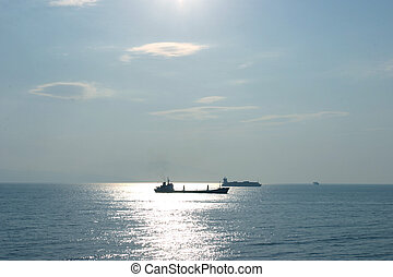 Oil tanker and container carrier