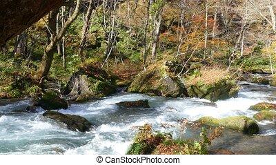 Oirase river at fall, Japan