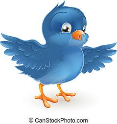 oiseau bleu, heureux