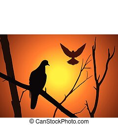 oiseau, branche