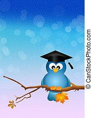 oiseau, branche, diplômé