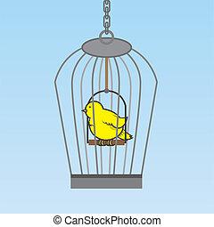 oiseau, cage d'oiseaux