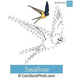 oiseau, dessiner, vecteur, hirondelle, apprendre