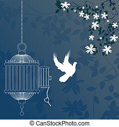 oiseau, et, cage