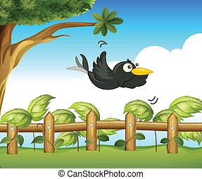 oiseau, jardin