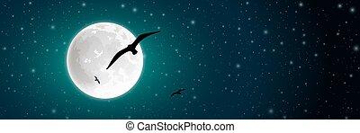 oiseau, lune
