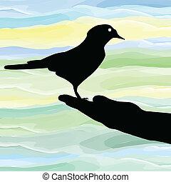 oiseau, main