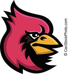 oiseau, mascotte, cardinal, tête