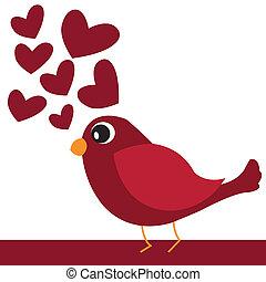 oiseau, rouges