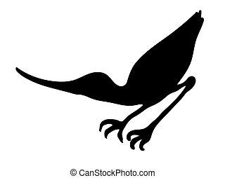 oiseau, silhouette, vecteur, bécasseau