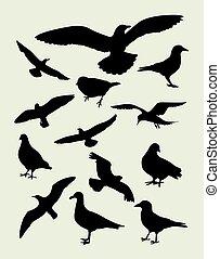 oiseau, silhouettes, mouette