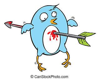 oiseau vole, bleu, attaqué