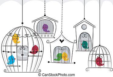 oiseaux, dans, cages