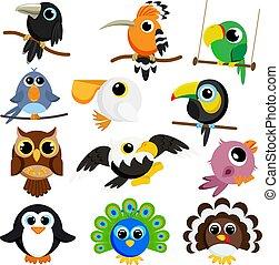 oiseaux, ensemble, vecteur