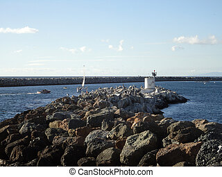 oiseaux mer, bateaux, jetée, redondo, mouvement, pendre