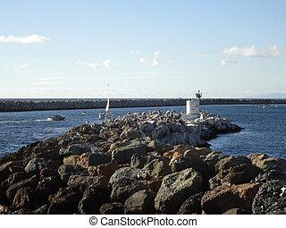 oiseaux mer, pendre, sur, jetée, comme, bateaux, mouvement, par, dans, redondo