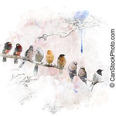 oiseaux, perching, aquarelle, image