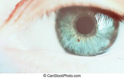 ojo, cicatrizarse, macro, foto