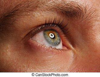 ojo humano, cicatrizarse