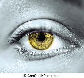 ojo, vector, macro., amarillo, hembra