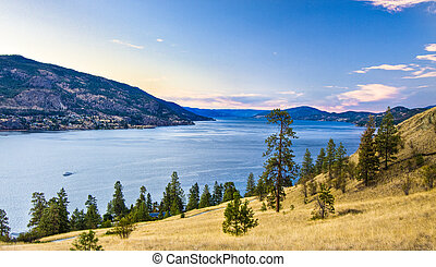 Okanagan Lake Viewed from Above